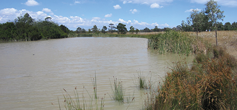 Wetland Condition Assessment, Australia